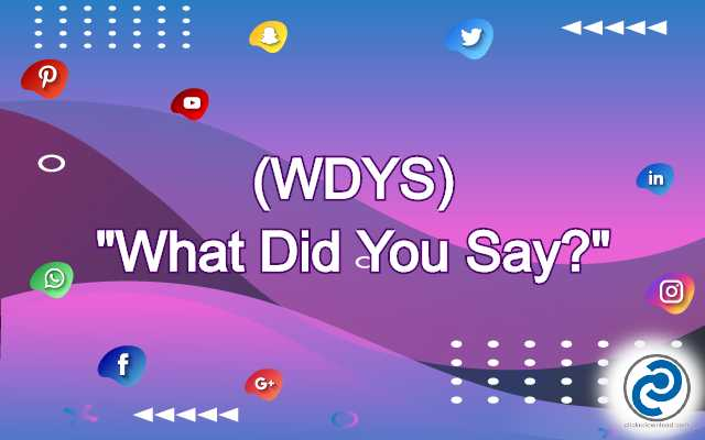 WDYS Meaning in Snapchat