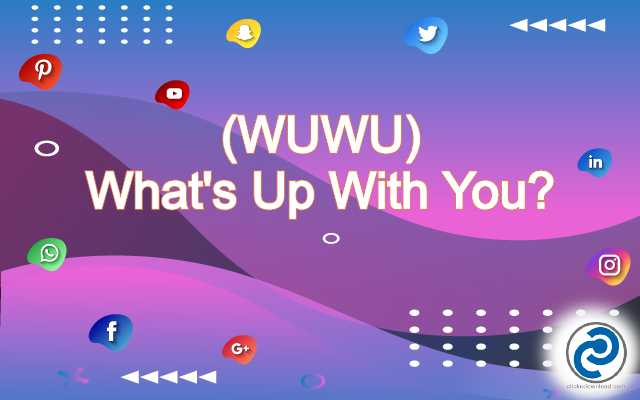 WUWU Meaning in Snapchat