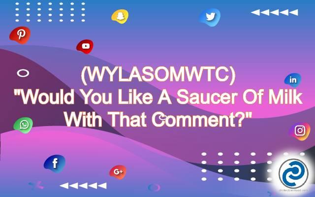 WYLASOMWTC Meaning in Snapchat