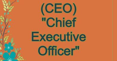 CEO Meaning in Snapchat,
