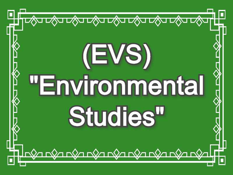 EVS Meaning in Snapchat,